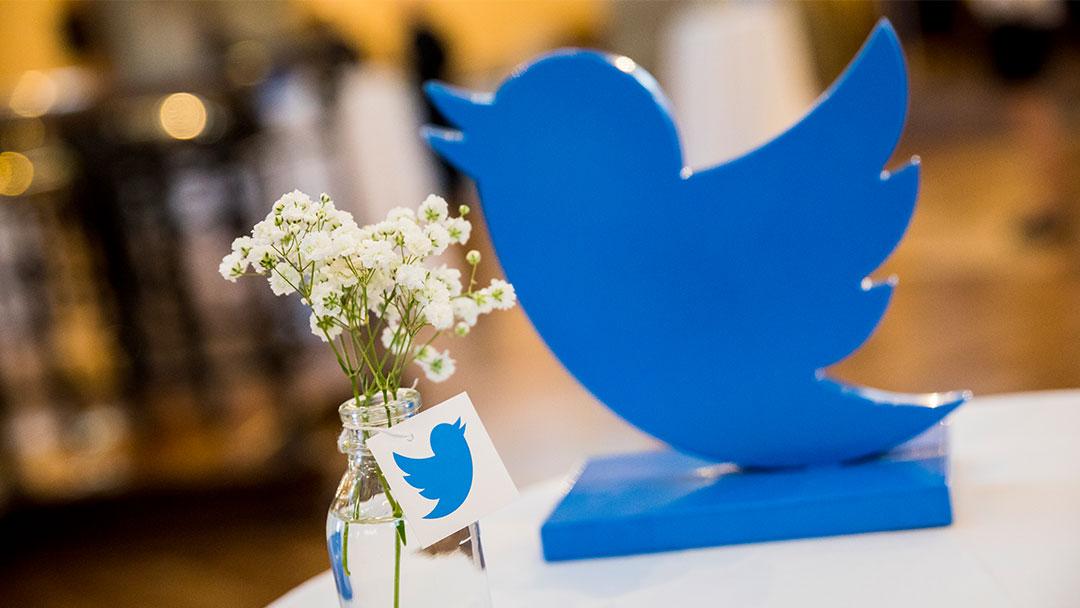 Logo de Twitter con flores